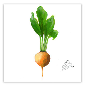 Illustration de betterave pour Foodchain Thumbnail